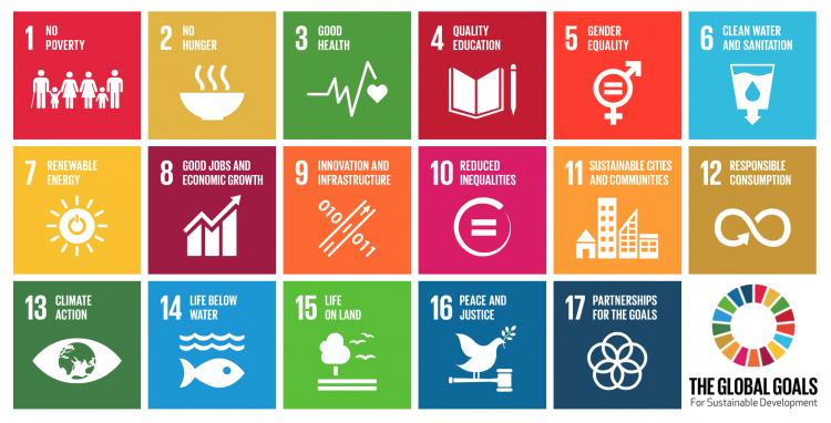 The 17 SDGs via UNDP